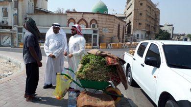 صورة بلدية تاروت: زيارة 132 محل غذائي وتنقل 840 م3 نفايات خلال شهر
