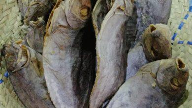 صورة «الإحْلى» طعام العيد.. ووحم الحوامل.. ونقنقة الفتيات في العصرية